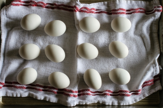 White Boiled Eggs