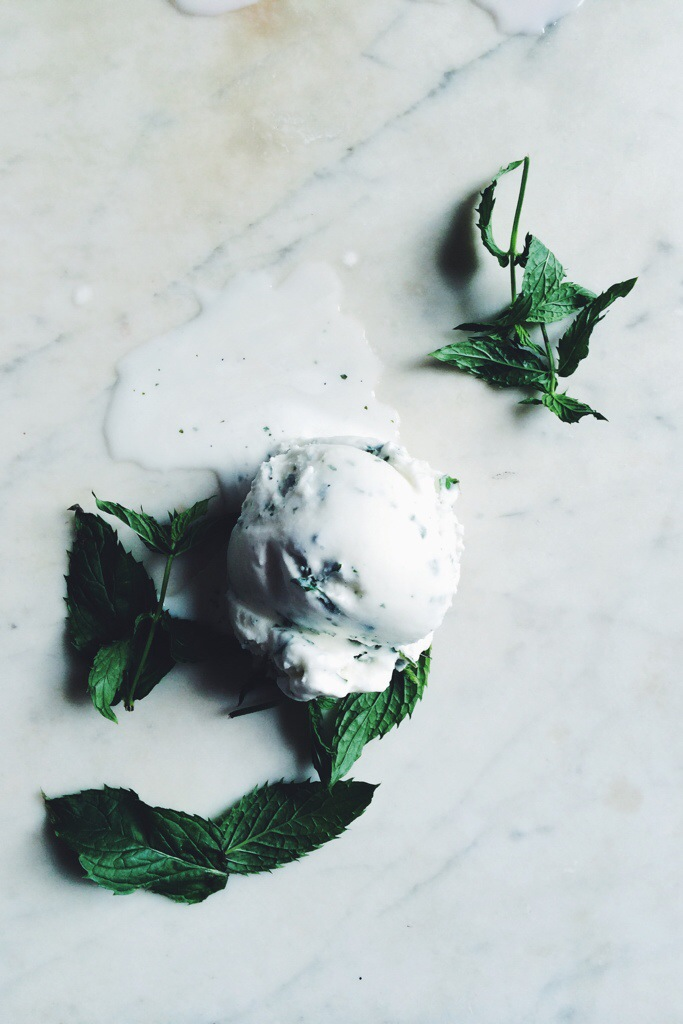 Backyard Mint Ice Cream | for the love of the south