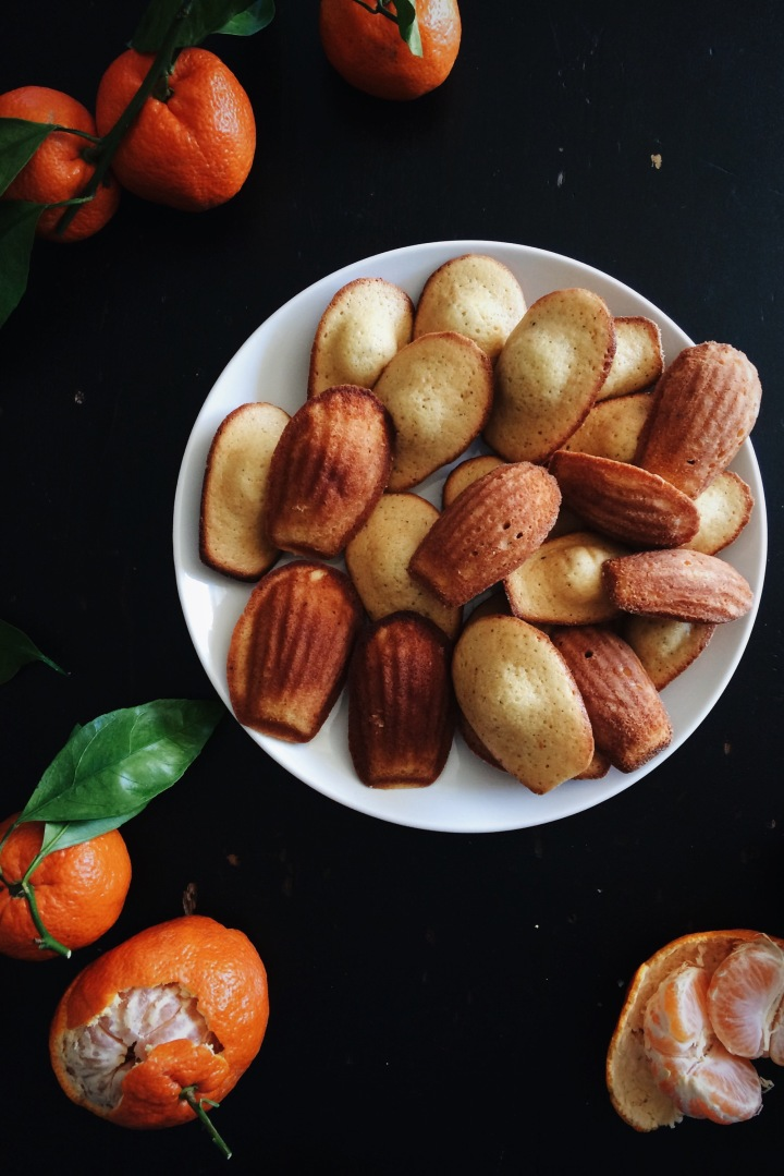 Satsuma Madeleines | for the love of the south